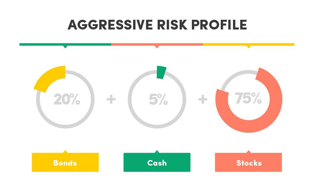 Aggressive risk profile asset allocation