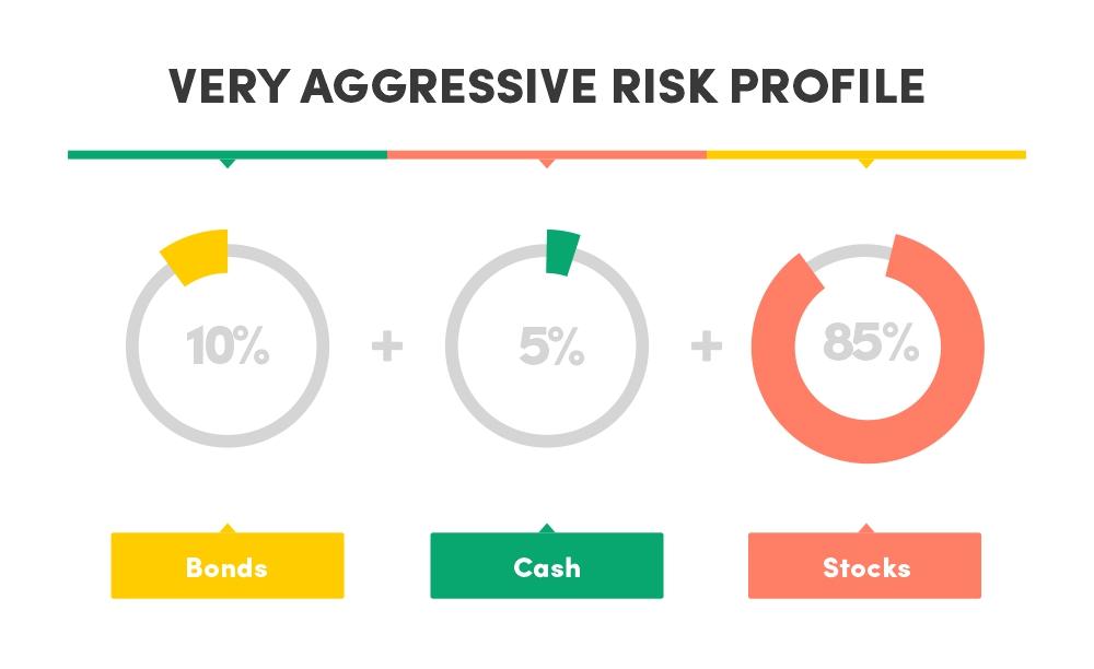Very aggressive risk profile asset allocation